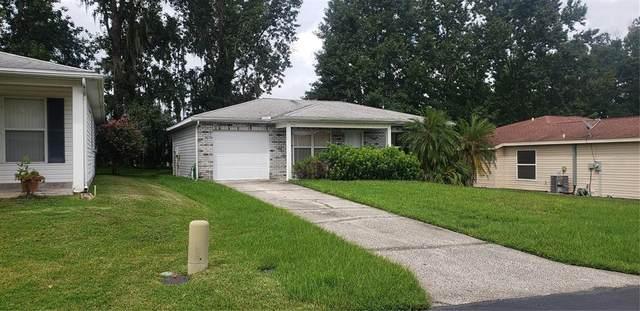 29205 Princeville Drive, San Antonio, FL 33576 (MLS #A4513028) :: Young Real Estate