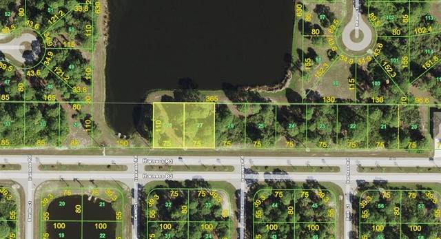 26 & 28 Harness Road, Placida, FL 33946 (MLS #A4513104) :: Gate Arty & the Group - Keller Williams Realty Smart