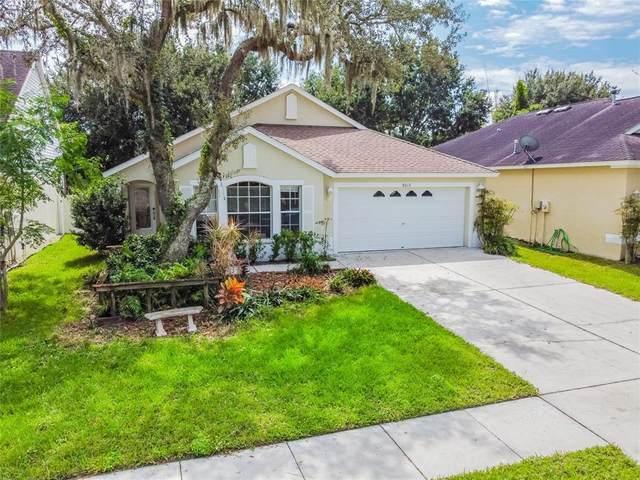 8013 Terrace Arbor Court, Tampa, FL 33637 (MLS #A4513155) :: Prestige Home Realty