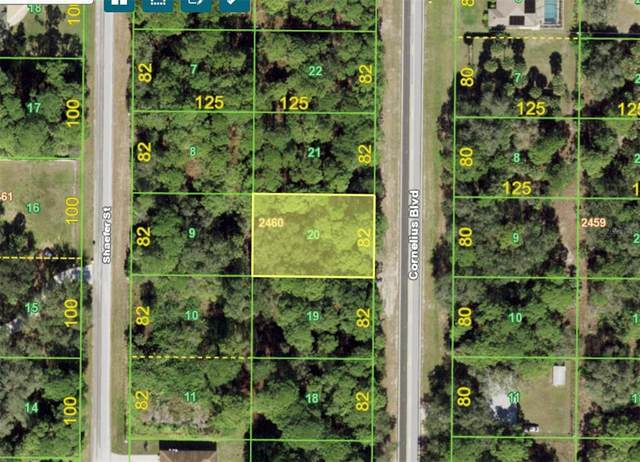 351 Cornelius Boulevard, Port Charlotte, FL 33953 (MLS #A4513166) :: Medway Realty