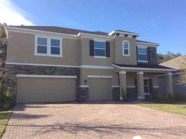 6521 49TH Court E, Ellenton, FL 34222 (MLS #A4513173) :: Zarghami Group