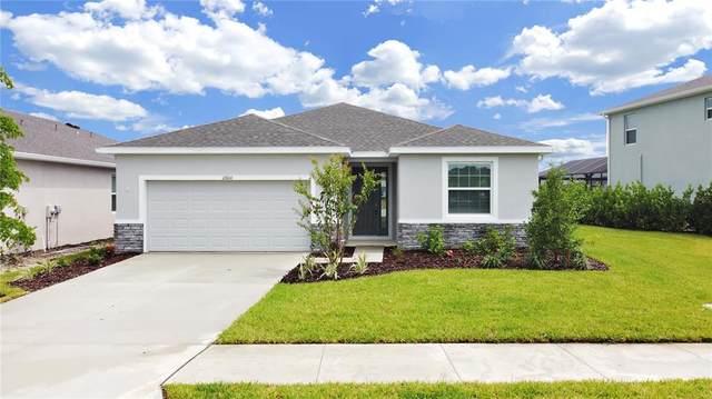 12600 Night View Drive, Sarasota, FL 34238 (MLS #A4513179) :: The Hesse Team