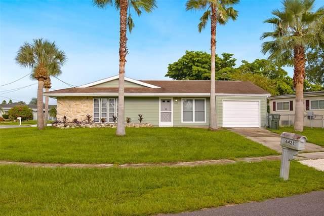 6428 Malaluka Road, North Port, FL 34287 (MLS #A4513190) :: Your Florida House Team