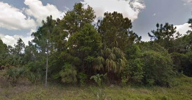 Barcelona Drive, North Port, FL 34288 (MLS #A4513200) :: Delgado Home Team at Keller Williams