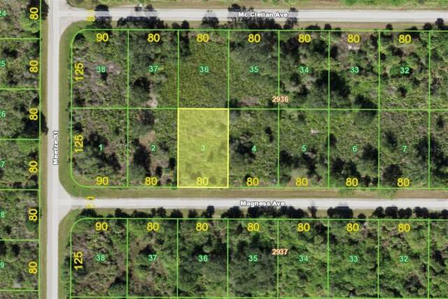 14132 Magness Avenue, Port Charlotte, FL 33953 (MLS #A4513214) :: The Curlings Group