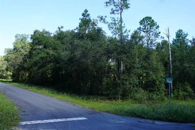 9271 N Sherman Drive, Citrus Springs, FL 34434 (MLS #A4513215) :: The Home Solutions Team   Keller Williams Realty New Tampa
