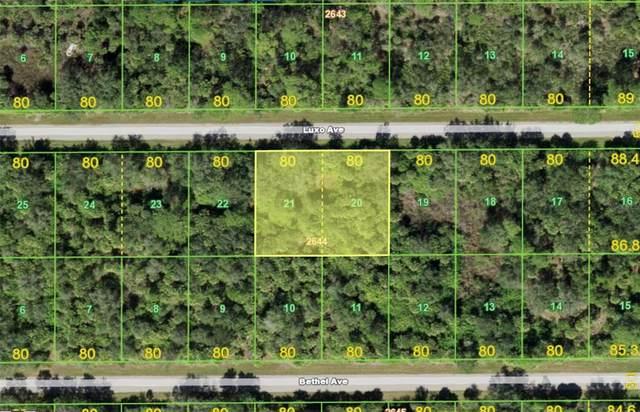 14217 Luxo Avenue, Port Charlotte, FL 33953 (MLS #A4513227) :: The Hustle and Heart Group