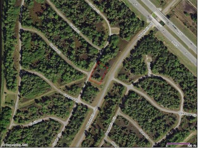 Custer Circle, North Port, FL 34288 (MLS #A4513228) :: The Duncan Duo Team