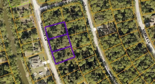 Hagerick Lane, North Port, FL 34288 (MLS #A4513230) :: Globalwide Realty