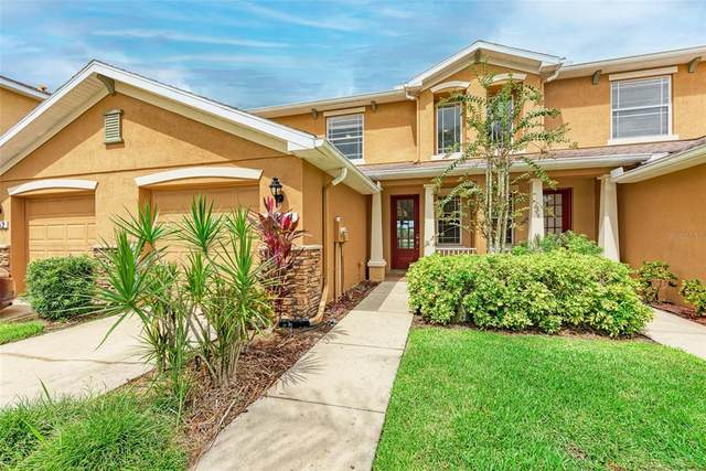 11464 52ND Court E, Parrish, FL 34219 (MLS #A4513235) :: Cartwright Realty