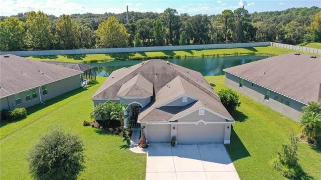 11207 77TH Street E, Parrish, FL 34219 (MLS #A4513296) :: Everlane Realty