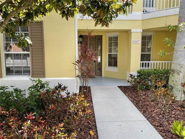 5667 Key Largo Court, Bradenton, FL 34203 (MLS #A4513308) :: Kelli and Audrey at RE/MAX Tropical Sands