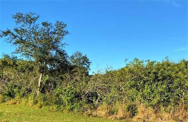 21452 Winlock Avenue, Port Charlotte, FL 33952 (MLS #A4513383) :: Armel Real Estate