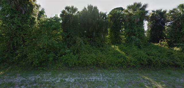 Virginia Street, North Port, FL 34287 (MLS #A4513392) :: Everlane Realty