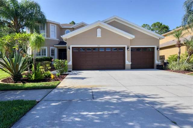2517 Carnation Court, North Port, FL 34289 (MLS #A4513422) :: Dalton Wade Real Estate Group