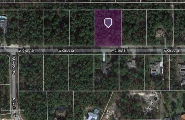 5729 W Cisco Street, Beverly Hills, FL 34465 (MLS #A4513558) :: Vacasa Real Estate