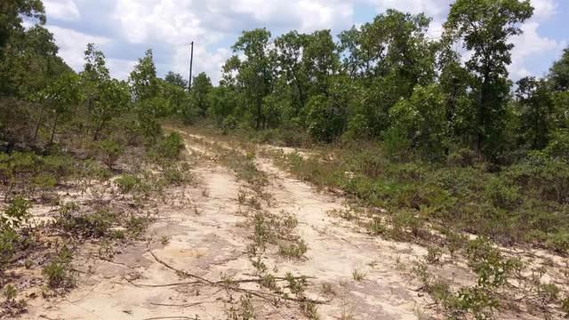 Hill Lane, Chipley, FL 32428 (MLS #A4513755) :: Delgado Home Team at Keller Williams