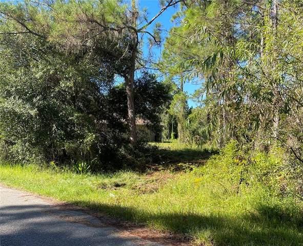 Gainsboro Street, North Port, FL 34291 (MLS #A4513897) :: Delgado Home Team at Keller Williams