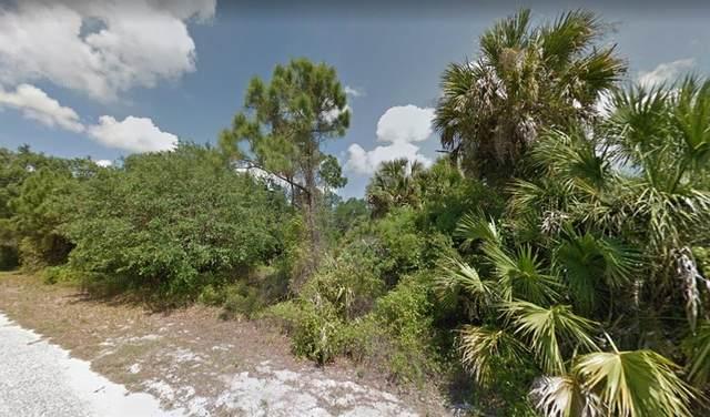 Pluto Avenue, North Port, FL 34288 (MLS #A4513961) :: Delgado Home Team at Keller Williams