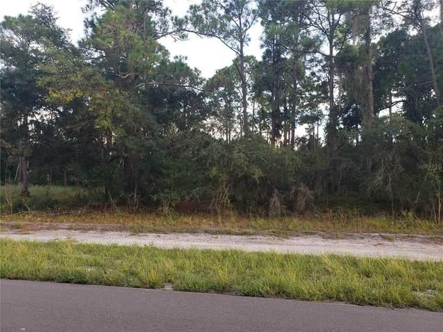 3220 Lake June Boulevard, Lake Placid, FL 33852 (MLS #A4514027) :: Delgado Home Team at Keller Williams