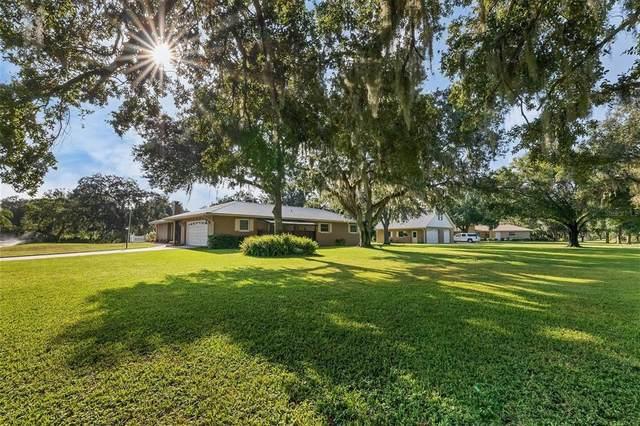 2201 Shadow Oaks Road, Sarasota, FL 34240 (MLS #A4514165) :: The Nathan Bangs Group