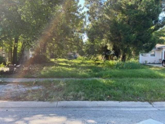 16TH Avenue S, St Petersburg, FL 33711 (MLS #A4514297) :: Orlando Homes Finder Team