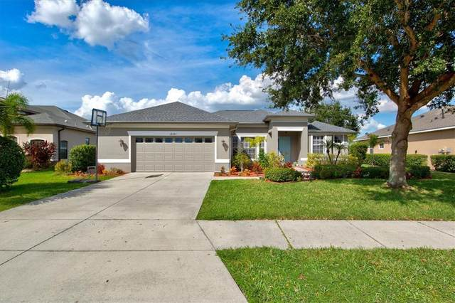 12203 Aster Avenue, Bradenton, FL 34212 (MLS #A4514404) :: Orlando Homes Finder Team