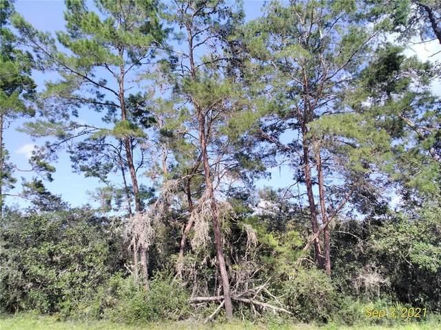 SW 50TH TERR RD LOT 13, Ocala, FL 34473 (MLS #A4514483) :: Delgado Home Team at Keller Williams