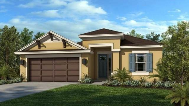 10447 Tranquil Meadow Loop, Riverview, FL 33569 (MLS #A4514547) :: Orlando Homes Finder Team