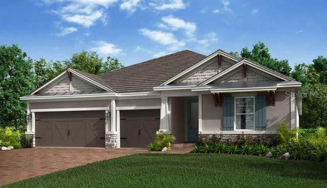 12601 Wetmore Court, Odessa, FL 33556 (MLS #A4514585) :: The Duncan Duo Team