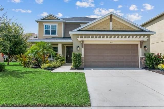 6113 Anise Drive, Sarasota, FL 34238 (MLS #A4514608) :: Cartwright Realty