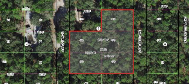 3802 S Killdeer Avenue, Inverness, FL 34450 (MLS #A4514613) :: Global Properties Realty & Investments