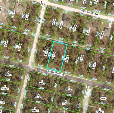 Barnevelde Road, Weeki Wachee, FL 34614 (MLS #A4514728) :: Everlane Realty