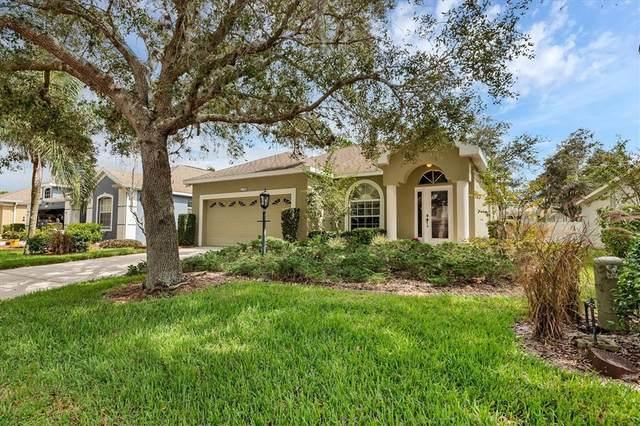 1133 Cane Mill Lane, Bradenton, FL 34212 (MLS #A4514761) :: Everlane Realty