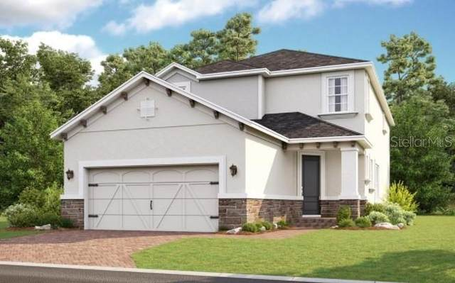 2858 Dudley Avenue, Odessa, FL 33556 (MLS #A4514764) :: Griffin Group