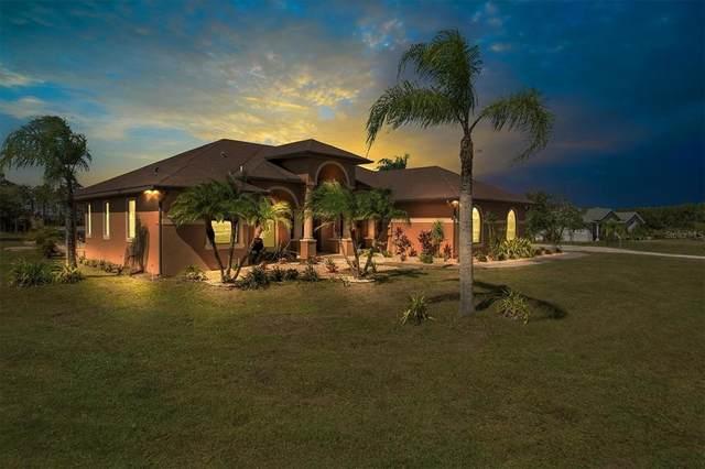 29325 Saddlebag Trail, Myakka City, FL 34251 (MLS #A4514765) :: SunCoast Home Experts