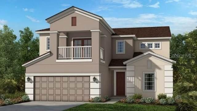3178 Evita Street, Orlando, FL 32824 (MLS #A4514837) :: Charles Rutenberg Realty