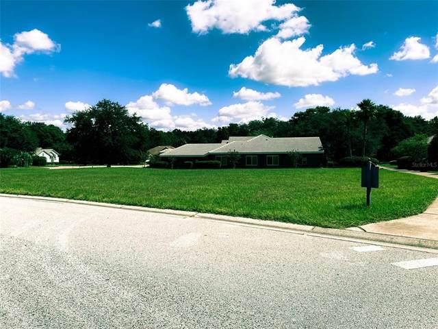 12618 Grand Traverse Drive, Dade City, FL 33525 (#A4514937) :: Caine Luxury Team