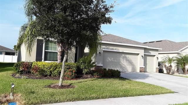 15518 Trinity Fall Way, Bradenton, FL 34212 (MLS #A4515045) :: Prestige Home Realty