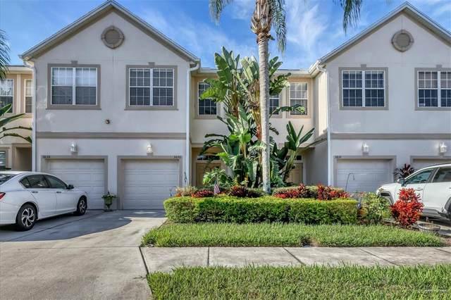 3826 Virga Boulevard, Sarasota, FL 34233 (MLS #A4515103) :: Rabell Realty Group