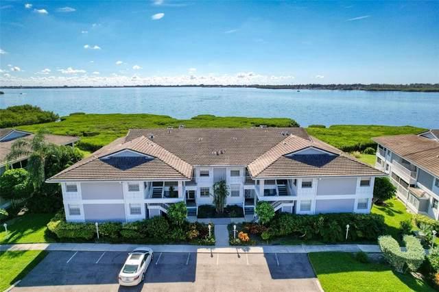 1137 Edgewater Circle, Bradenton, FL 34209 (MLS #A4515105) :: Kelli Eggen at RE/MAX Tropical Sands