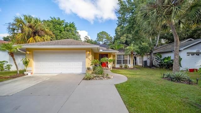 3925 Warren Street, Sarasota, FL 34233 (MLS #A4515189) :: Baird Realty Group