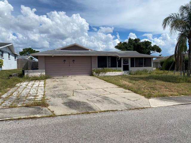 3648 Odom Drive, New Port Richey, FL 34652 (MLS #A4515290) :: Griffin Group