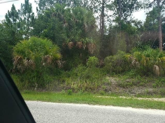 Halacka Road, North Port, FL 34288 (MLS #A4515299) :: Rabell Realty Group
