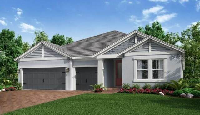 12617 Wetmore Court, Odessa, FL 33556 (MLS #A4515354) :: Griffin Group