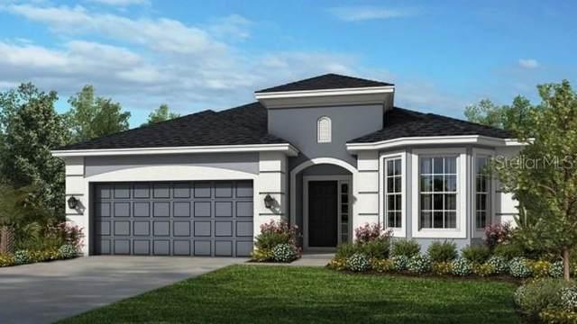 1210 Pando Loop, Orlando, FL 32824 (MLS #A4515373) :: Charles Rutenberg Realty