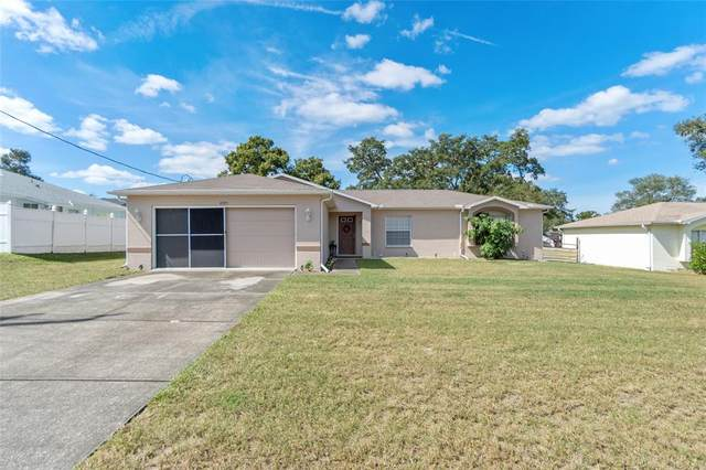 4325 Bluewater Avenue, Spring Hill, FL 34606 (MLS #A4515404) :: Expert Advisors Group