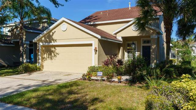 10216 41ST CT E, Parrish, FL 34219 (MLS #A4515469) :: The Truluck TEAM