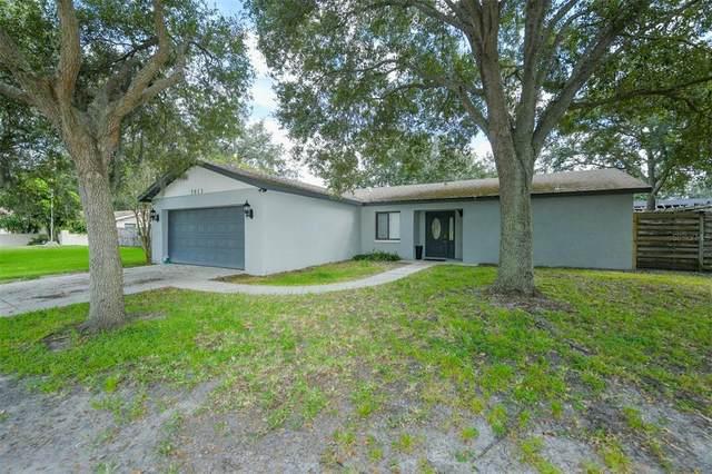 7613 Tuttle Avenue, Sarasota, FL 34243 (MLS #A4515604) :: MavRealty