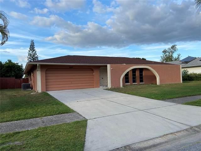 6455 Jarvis Road, Sarasota, FL 34241 (MLS #A4515661) :: SunCoast Home Experts